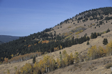 Okanogan Ecoregion scene
