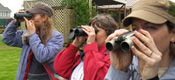 birders with binoculars